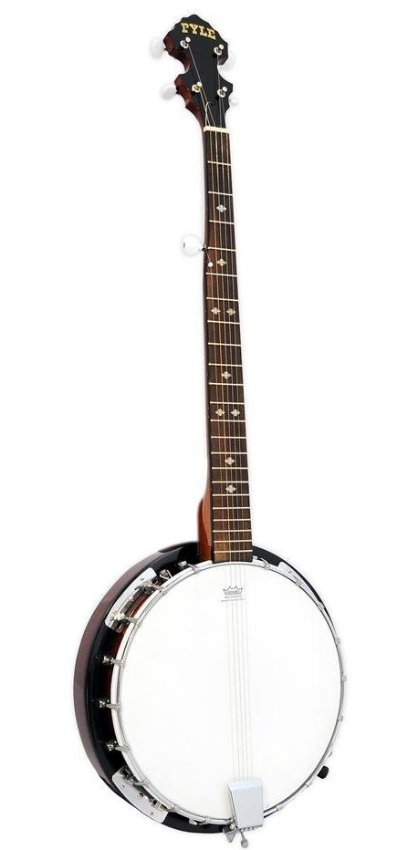 How Many Strings Does A Banjo Have
